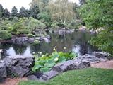 the mini lake