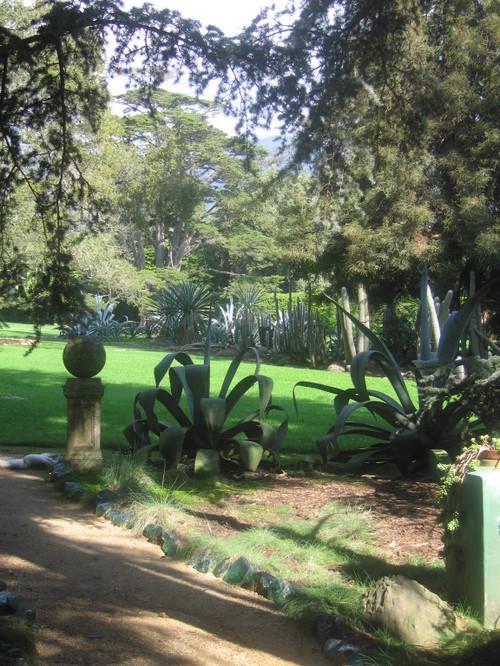 Feb 25 in Lottusland - succulents happy